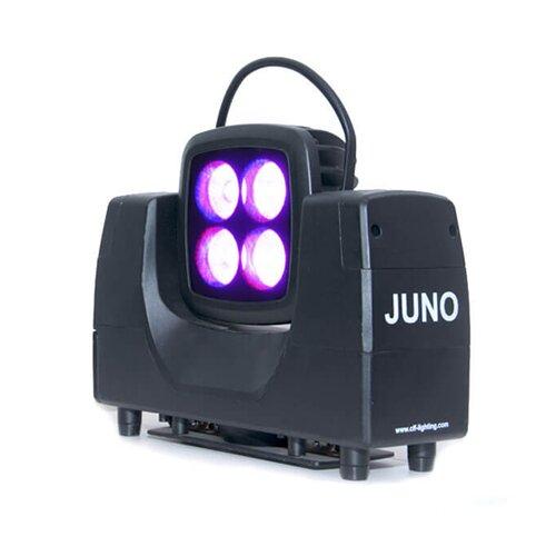 CLF Juno [6 stuks in case]